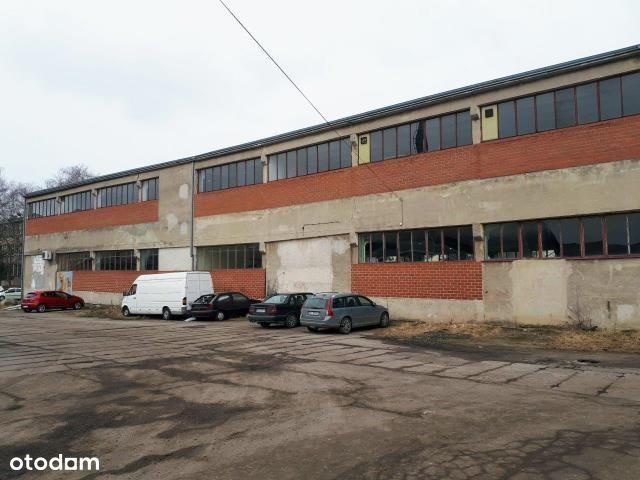 Lokal użytkowy, 800 m², Kołobrzeg