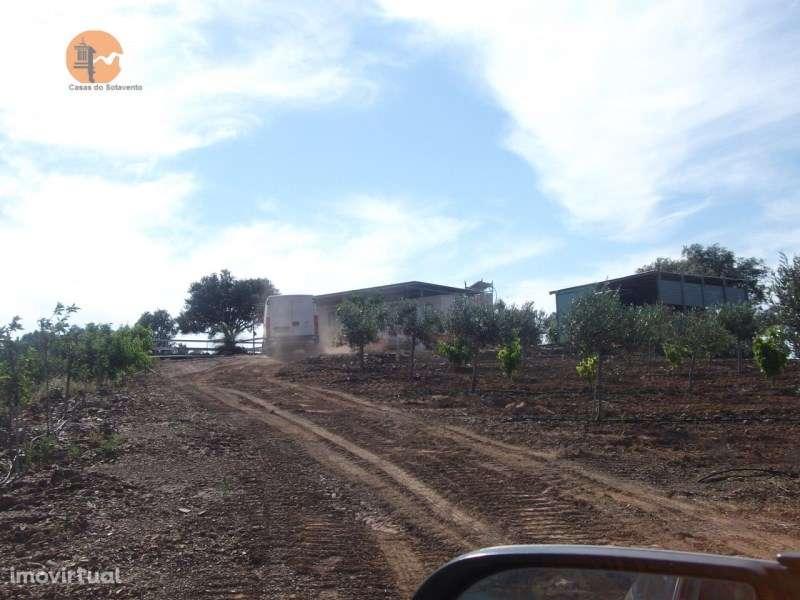 Terreno para comprar, Largo de Santa Bárbara, Azinhal - Foto 7
