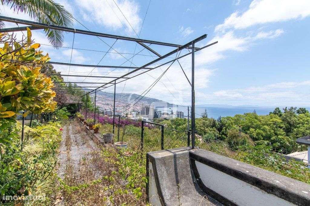 Quintas e herdades para comprar, São Martinho, Ilha da Madeira - Foto 8