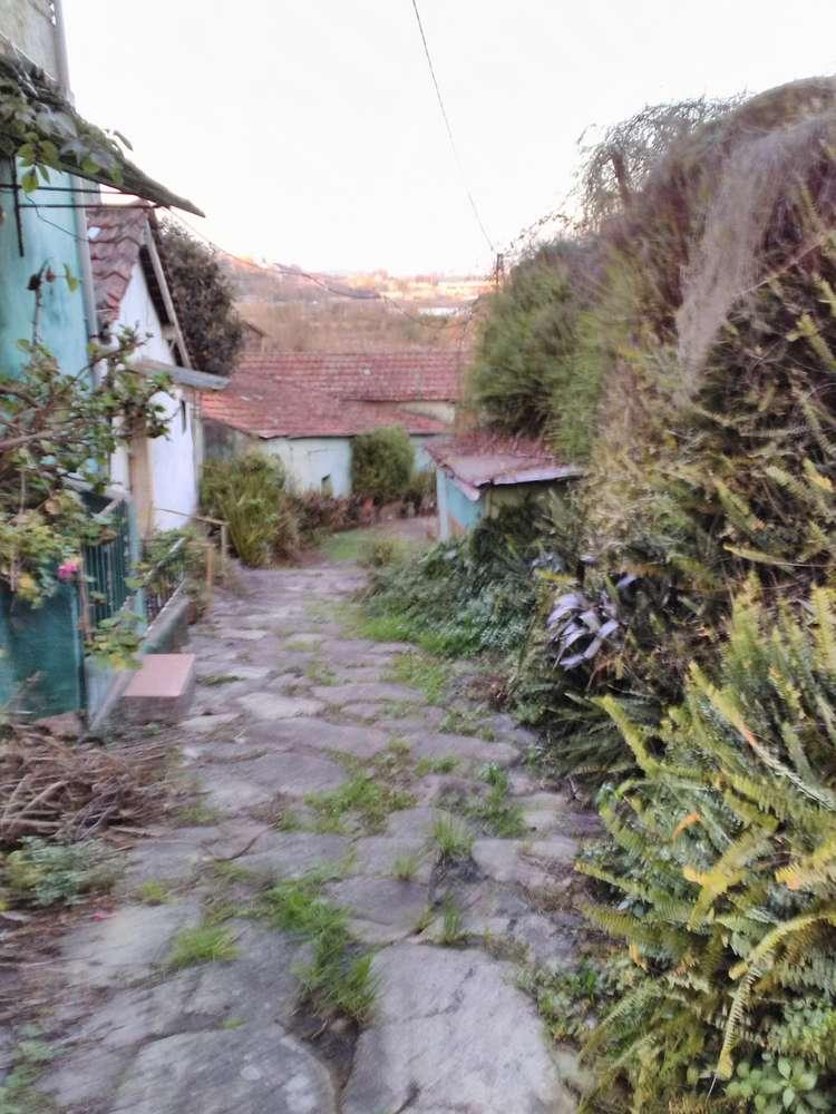 Quintas e herdades para comprar, Oliveira do Douro, Vila Nova de Gaia, Porto - Foto 31