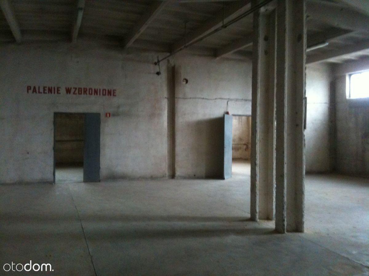 Hala/Magazyn, 450 m², Gliwice