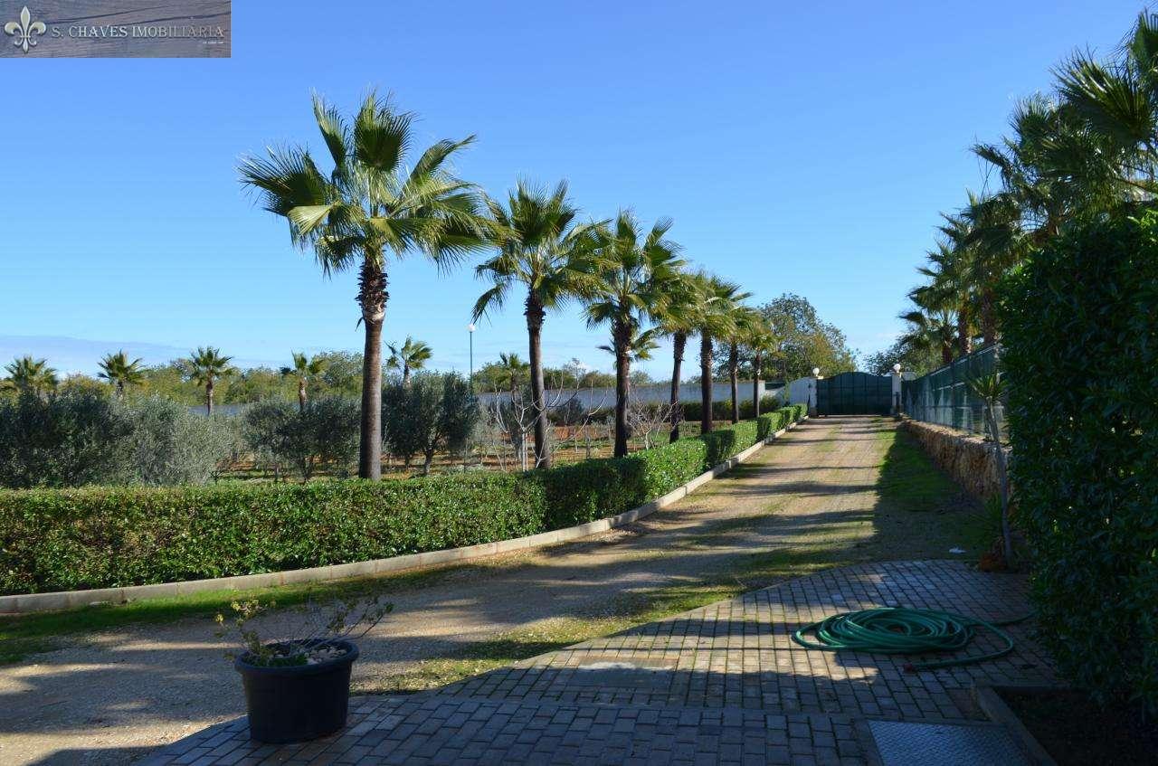 Quintas e herdades para comprar, Guia, Faro - Foto 19