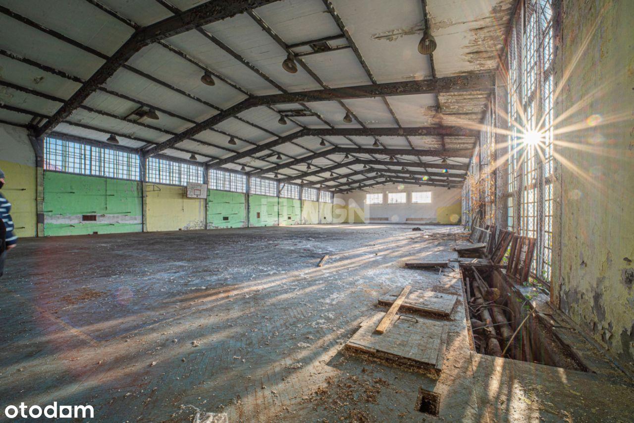 Lokal użytkowy, 940 m², Zgorzelec