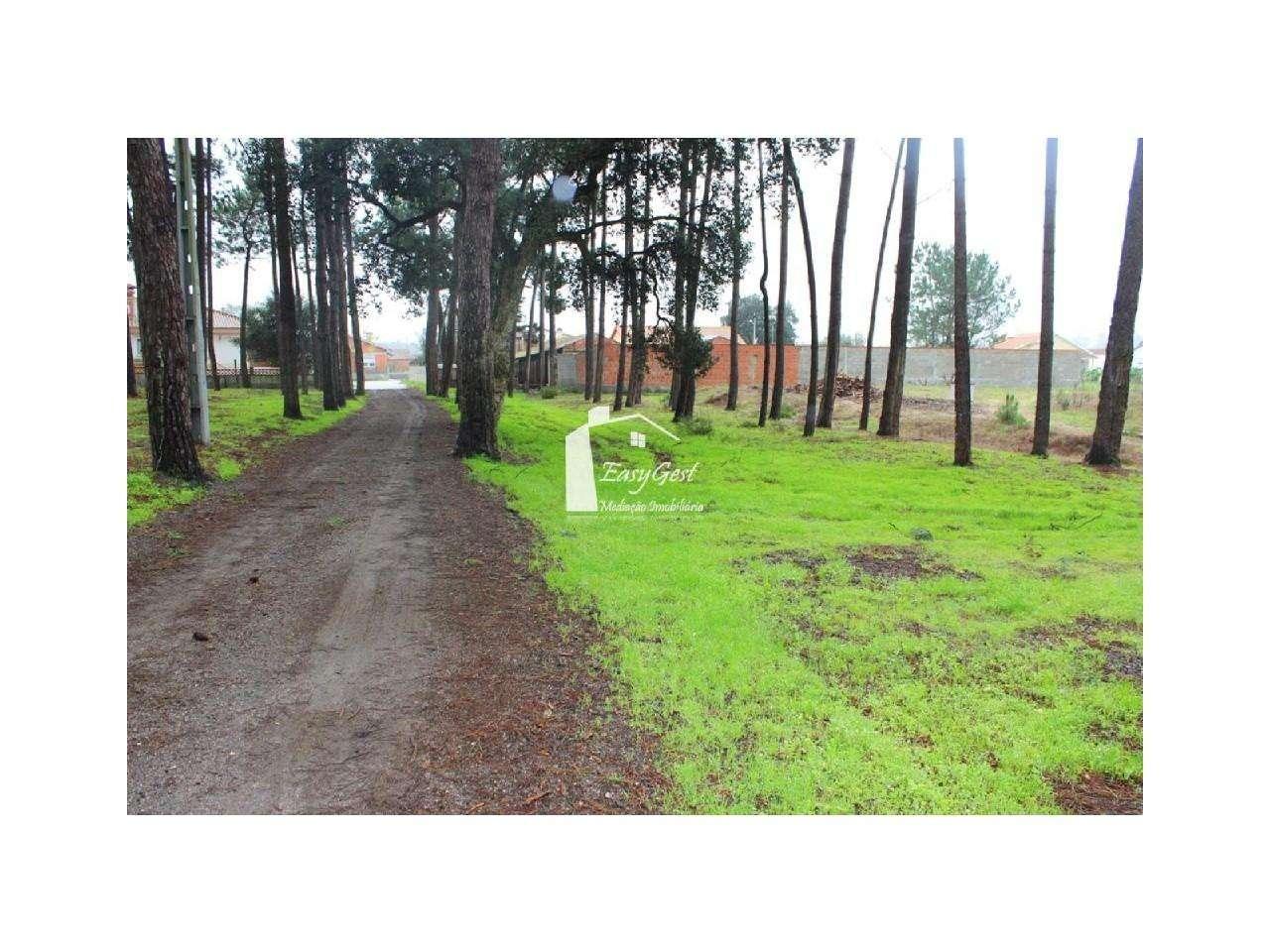 Terreno para comprar, Monte Redondo e Carreira, Leiria - Foto 6