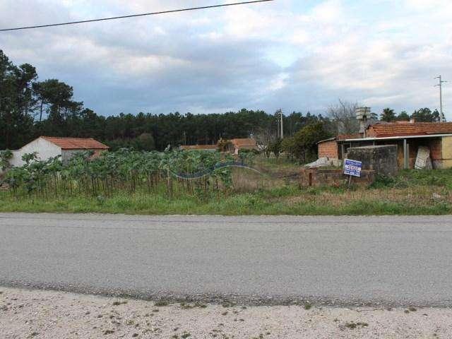 Terreno para comprar, Louriçal, Pombal, Leiria - Foto 2