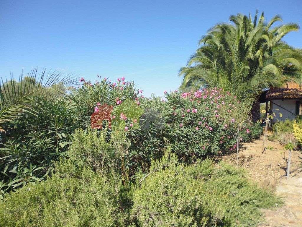 Quintas e herdades para comprar, Vila Verde de Ficalho, Beja - Foto 18