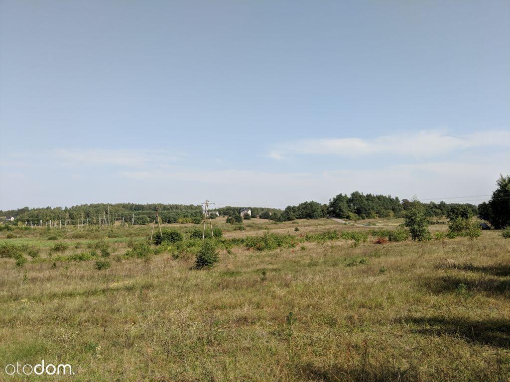 Działka rolna w Łomii - 5,32 ha w jednym kawałku