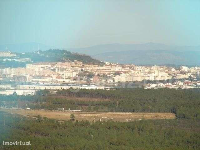 Loja para comprar, Almaceda, Castelo Branco - Foto 15