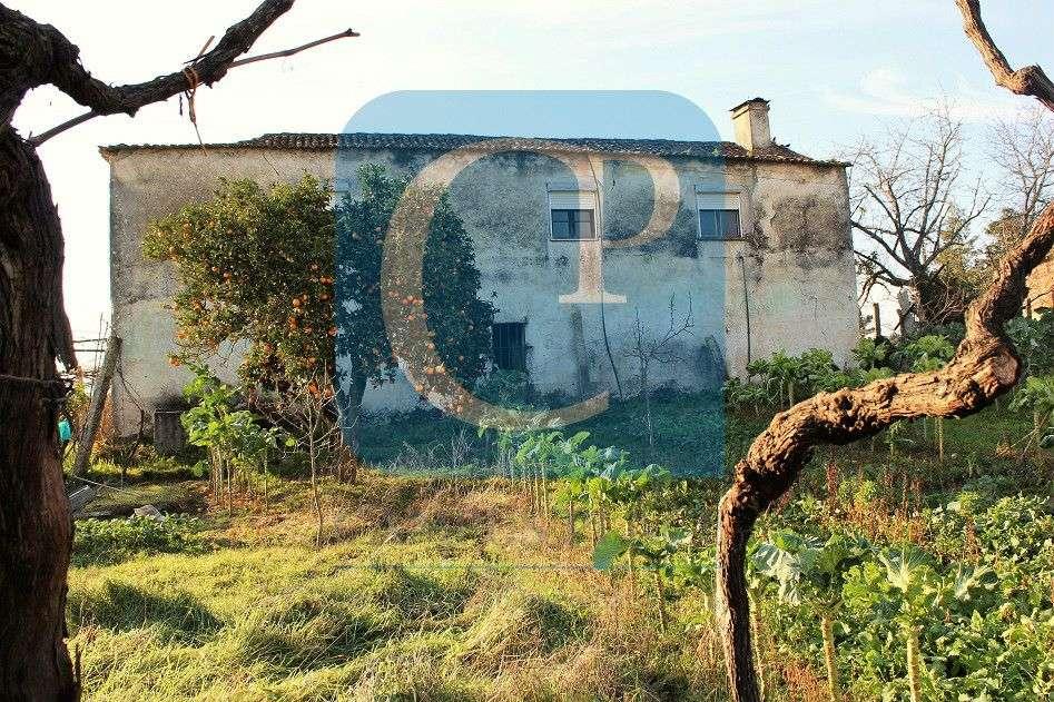 Quintas e herdades para comprar, Moreira, Viana do Castelo - Foto 8