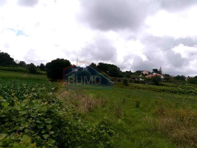 Terreno para comprar, Cardielos e Serreleis, Viana do Castelo - Foto 1