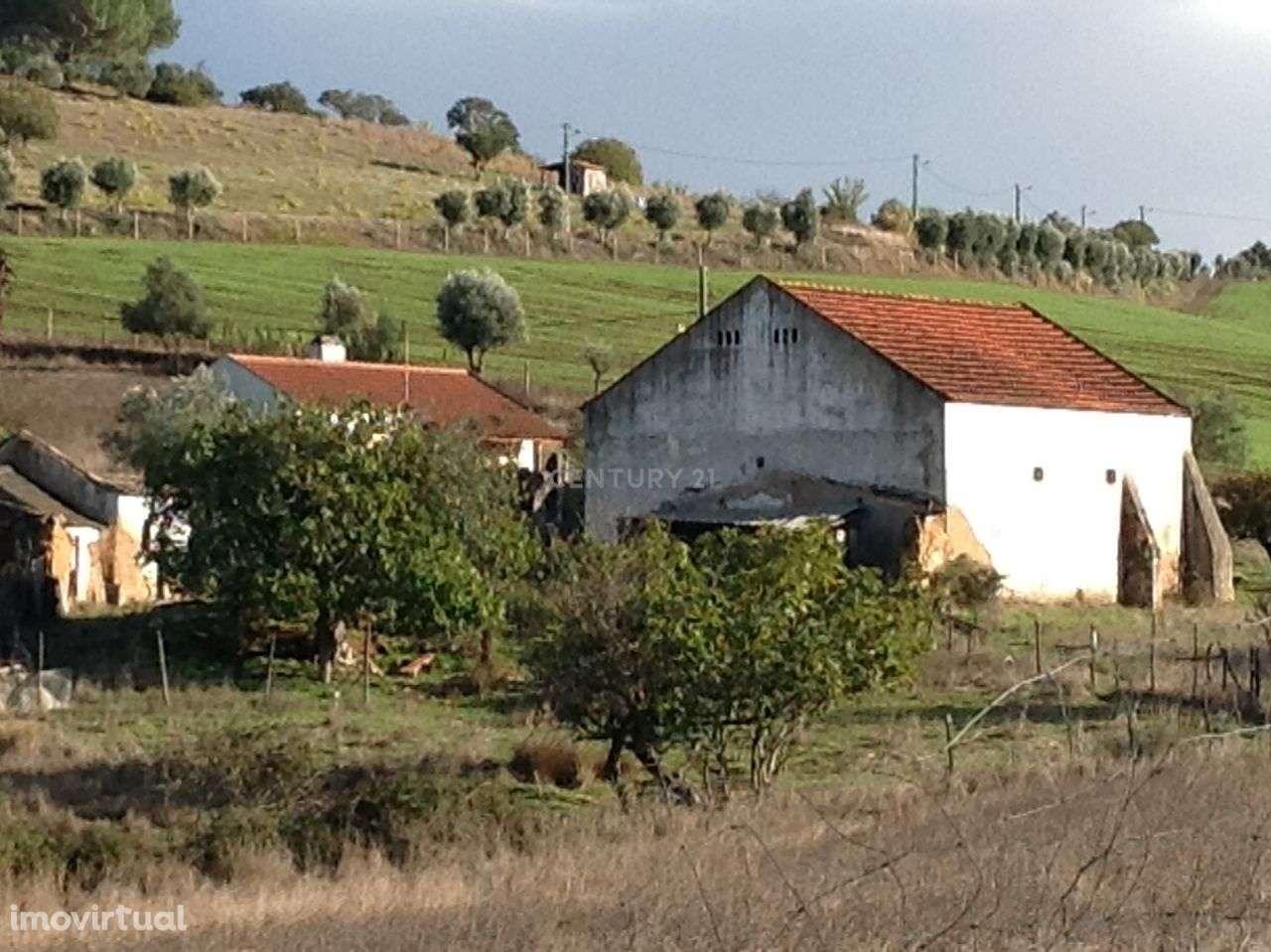 Moradia para comprar, Vale do Paraíso, Azambuja, Lisboa - Foto 4