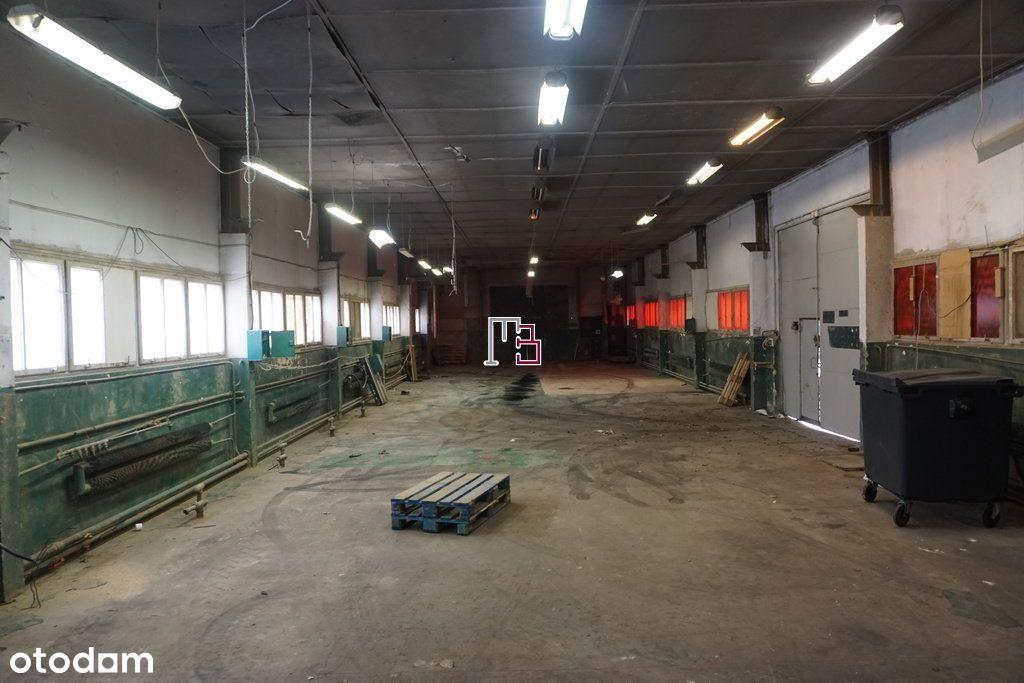 Hala pod produkcję 480m2.