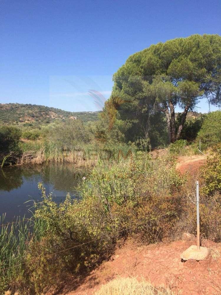 Quintas e herdades para comprar, Salir, Faro - Foto 6