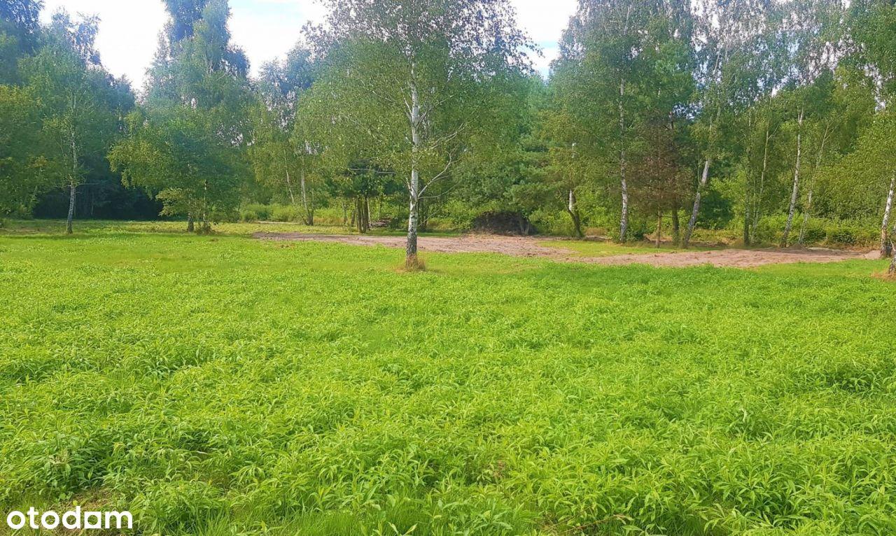 Działka w zielonej okolicy
