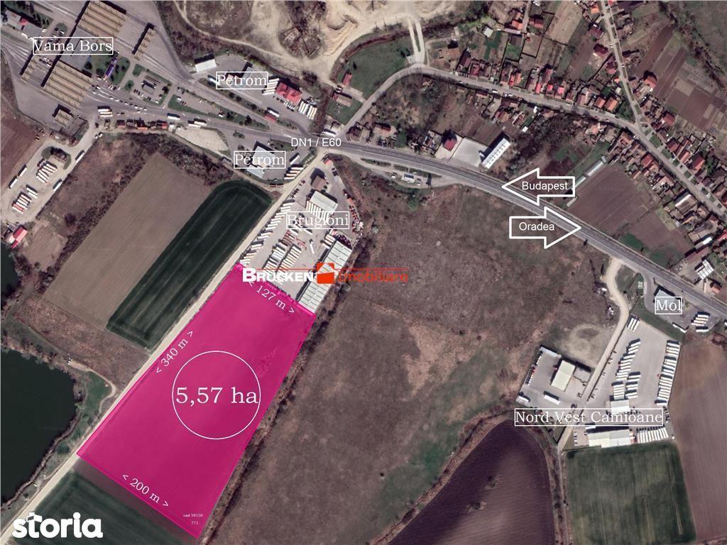 Teren industrial, logistica, servicii... 5,57ha Bors (Oradea)