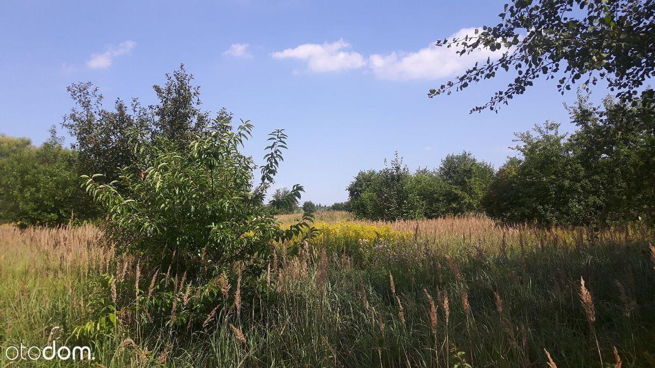 Działka rolna, 8685m2, blisko zalewu