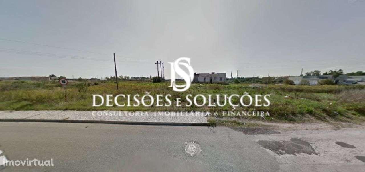 Terreno para comprar, São João Baptista, Entroncamento, Santarém - Foto 3