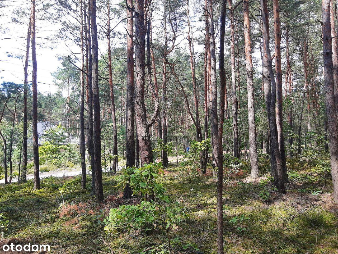 Żarki Letnisko działka budowlana leśna uzbrojona