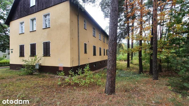 Kęszyca Leśna - mieszkanie 3-pokojowe