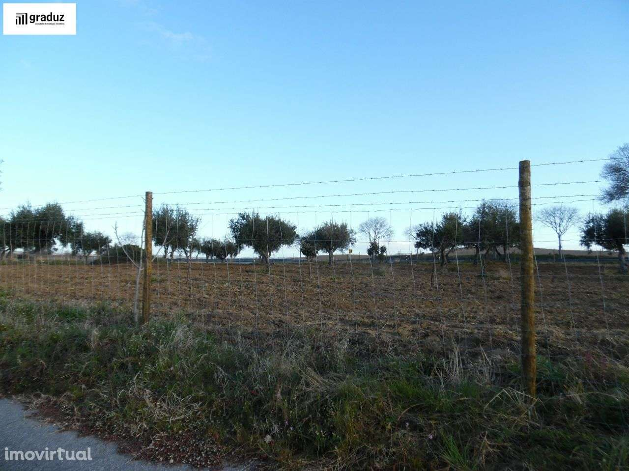 Terreno para comprar, Idanha-a-Nova e Alcafozes, Castelo Branco - Foto 4