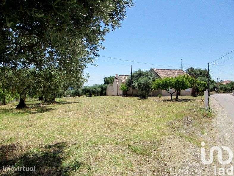 Terreno para comprar, Tomar (São João Baptista) e Santa Maria dos Olivais, Tomar, Santarém - Foto 4
