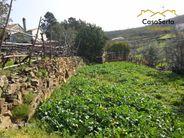 Terreno para comprar, Ermida e Figueiredo, Sertã, Castelo Branco - Foto 13
