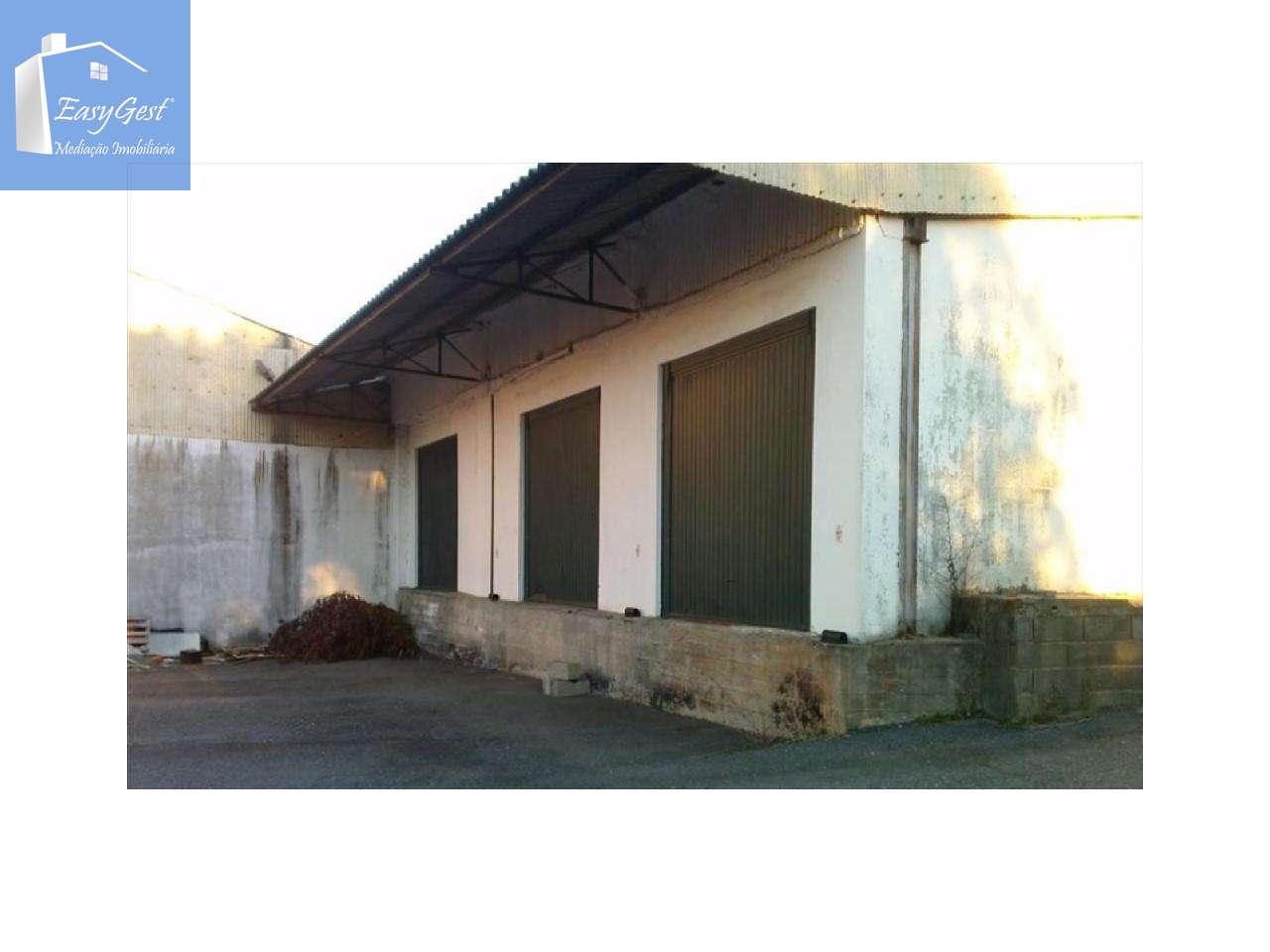 Armazém para comprar, Dominguizo, Castelo Branco - Foto 2