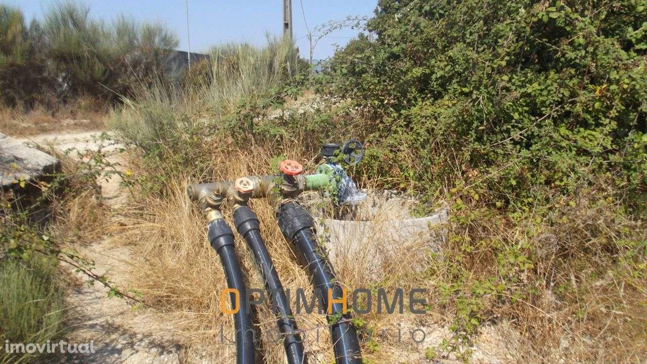 Quintas e herdades para comprar, Caria, Belmonte, Castelo Branco - Foto 15