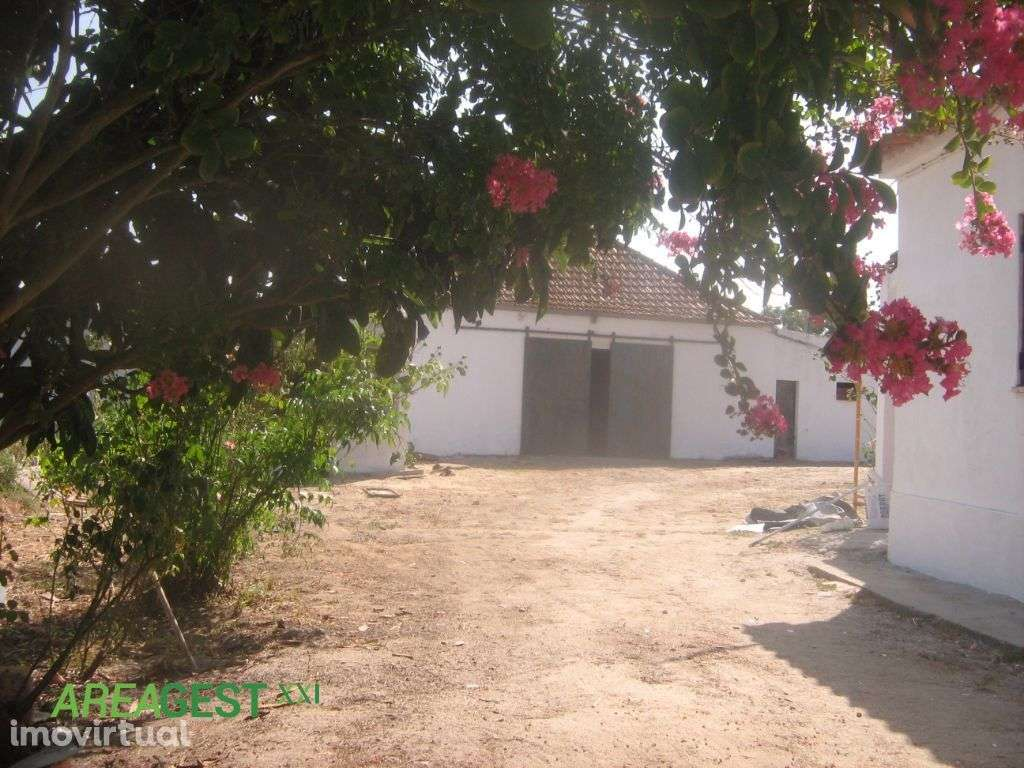 Quintas e herdades para comprar, Poceirão e Marateca, Setúbal - Foto 10
