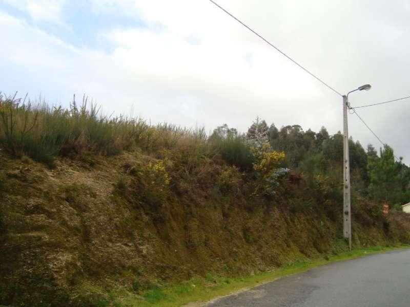 Terreno para comprar, Cete, Paredes, Porto - Foto 4