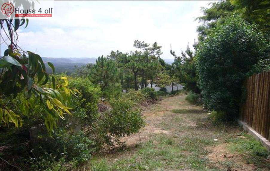 Terreno para comprar, Coz, Alpedriz e Montes, Leiria - Foto 3
