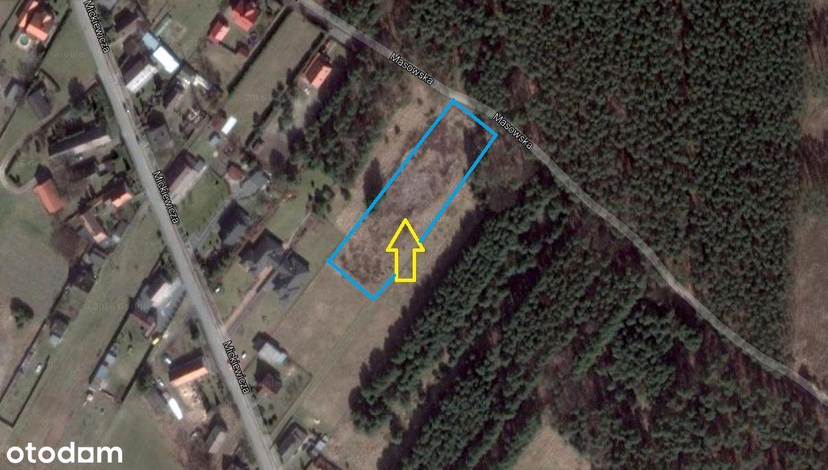 3 Działki w naturze przy lesie w Opole Świerkle