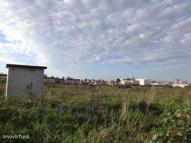 Terreno para comprar, Póvoa de Varzim, Beiriz e Argivai, Povoa de Varzim, Porto - Foto 3