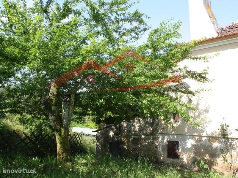 Quintas e herdades para comprar, Cedrim e Paradela, Sever do Vouga, Aveiro - Foto 9