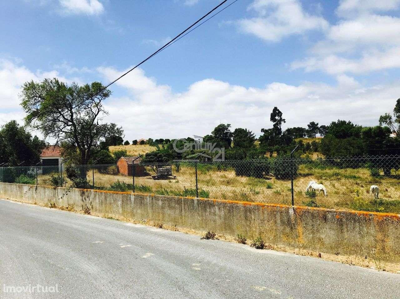 Quintas e herdades para comprar, Ereira e Lapa, Cartaxo, Santarém - Foto 3