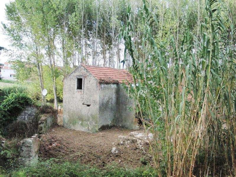 Terreno para comprar, Coz, Alpedriz e Montes, Leiria - Foto 6