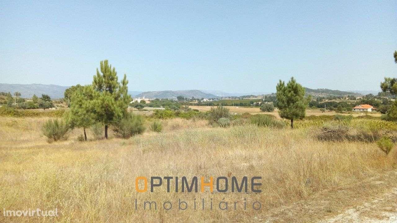 Quintas e herdades para comprar, Caria, Belmonte, Castelo Branco - Foto 22