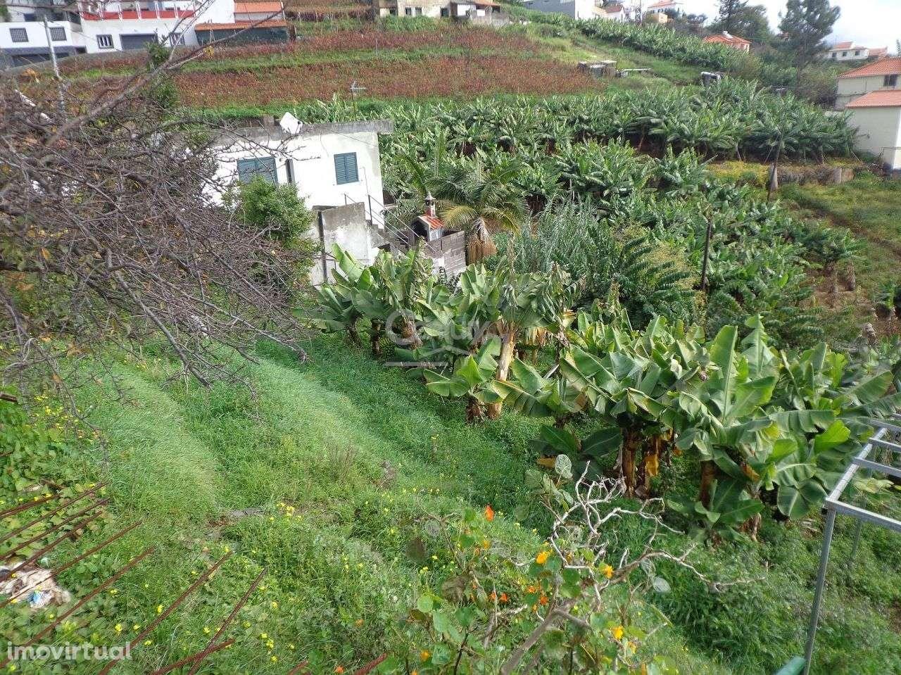 Terreno para comprar, Santo António, Ilha da Madeira - Foto 3