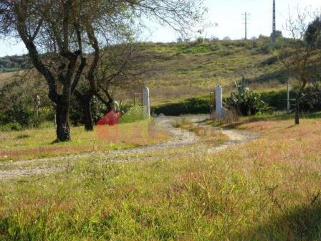 Terreno para comprar, Serpa (Salvador e Santa Maria), Beja - Foto 1