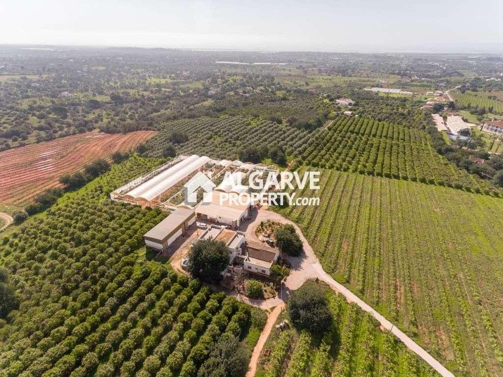Moradia para comprar, Algés, Linda-a-Velha e Cruz Quebrada-Dafundo, Oeiras, Lisboa - Foto 1