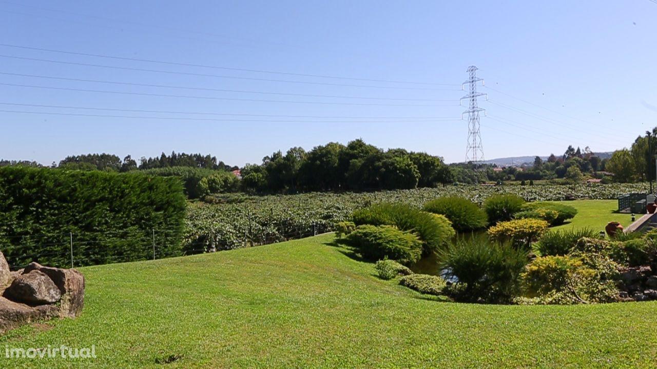 Quintas e herdades para comprar, Termas de São Vicente, Penafiel, Porto - Foto 17