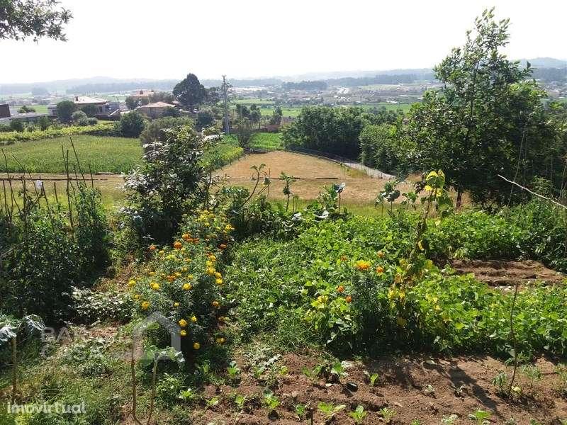 Terreno para comprar, Milhazes, Vilar de Figos e Faria, Braga - Foto 1
