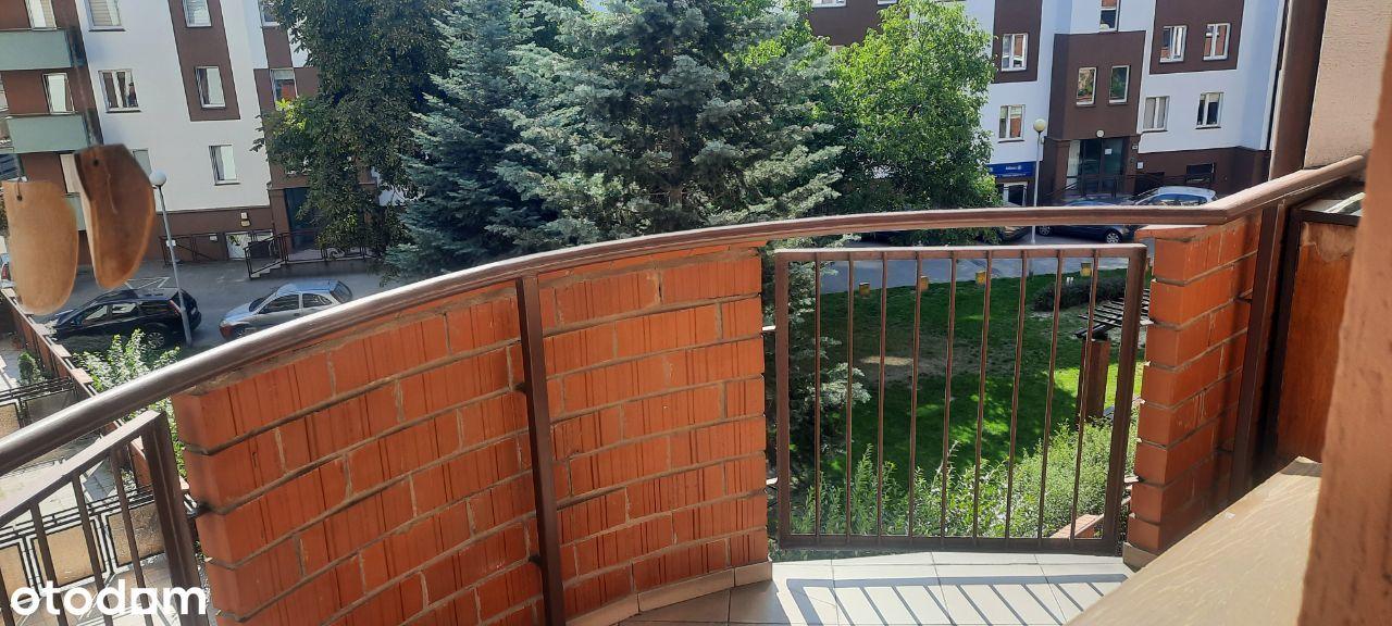 Mieszkanie Wilda 2 pokoje dwa balkony,