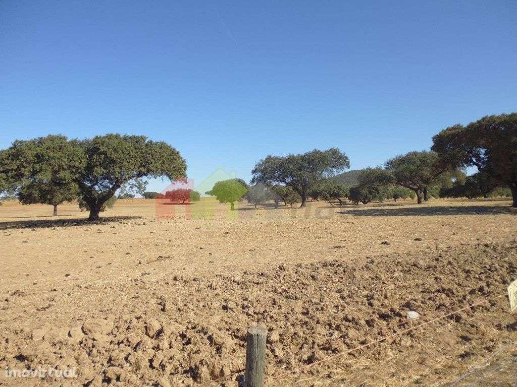 Quintas e herdades para comprar, Vila Verde de Ficalho, Beja - Foto 23