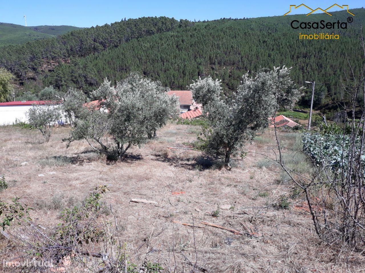 Terreno para comprar, Oleiros-Amieira, Oleiros, Castelo Branco - Foto 10