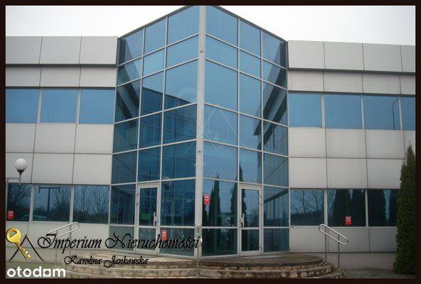 Lokal użytkowy, 9 000 m², Oborniki