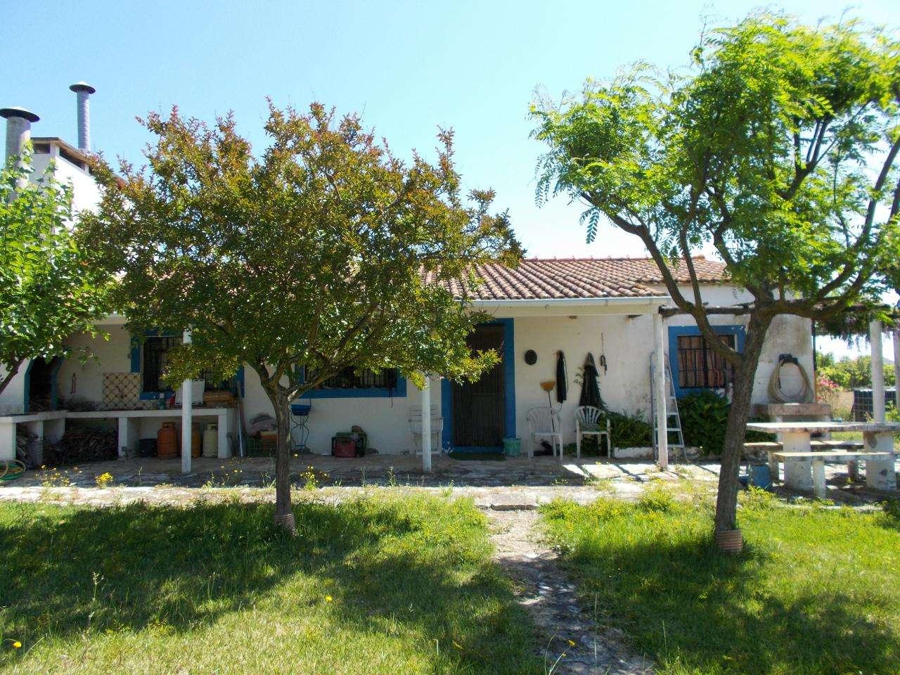 Quintas e herdades para comprar, Vale de Santarém, Santarém - Foto 4