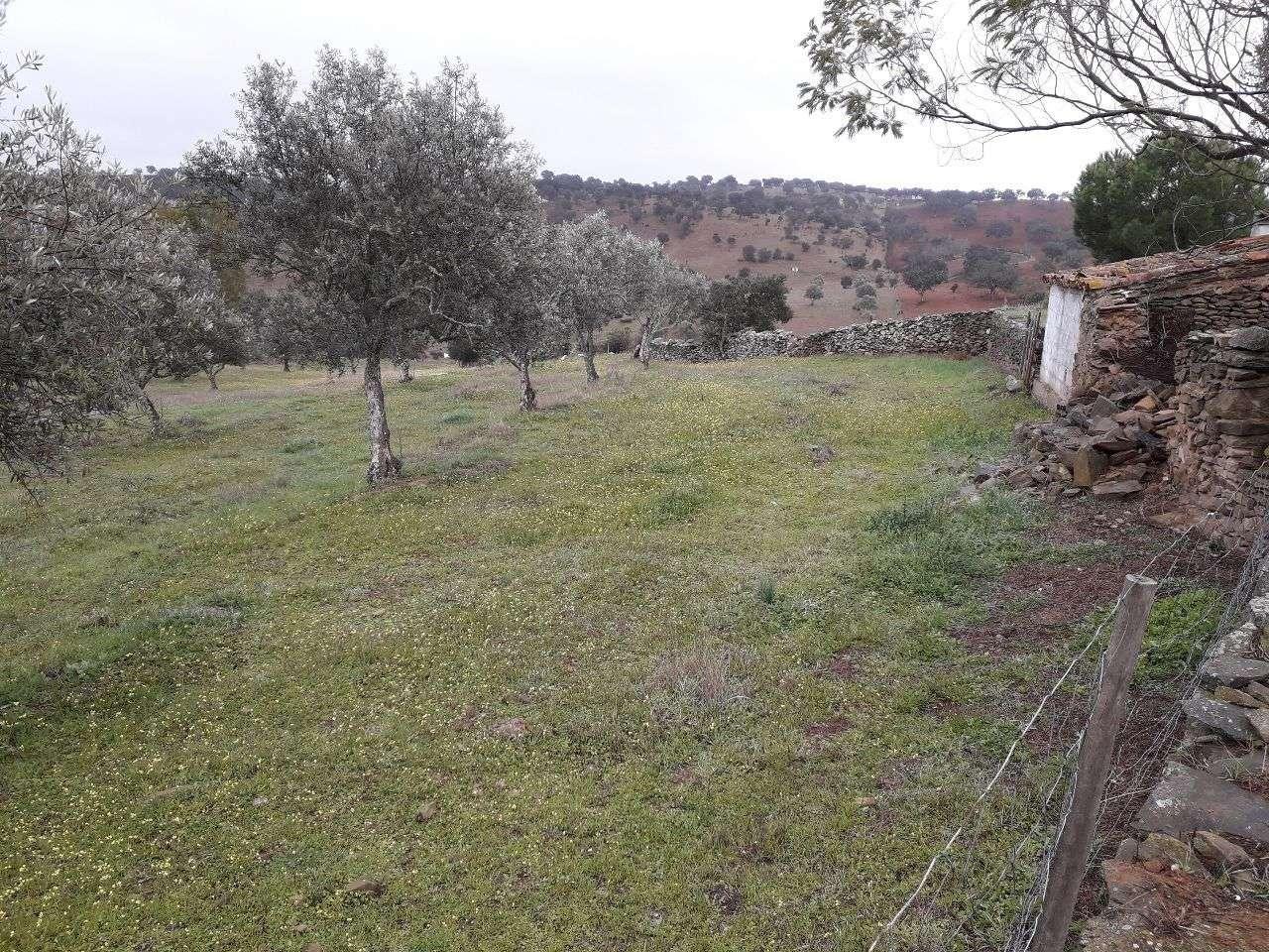 Quintas e herdades para comprar, Almodôvar e Graça dos Padrões, Beja - Foto 16
