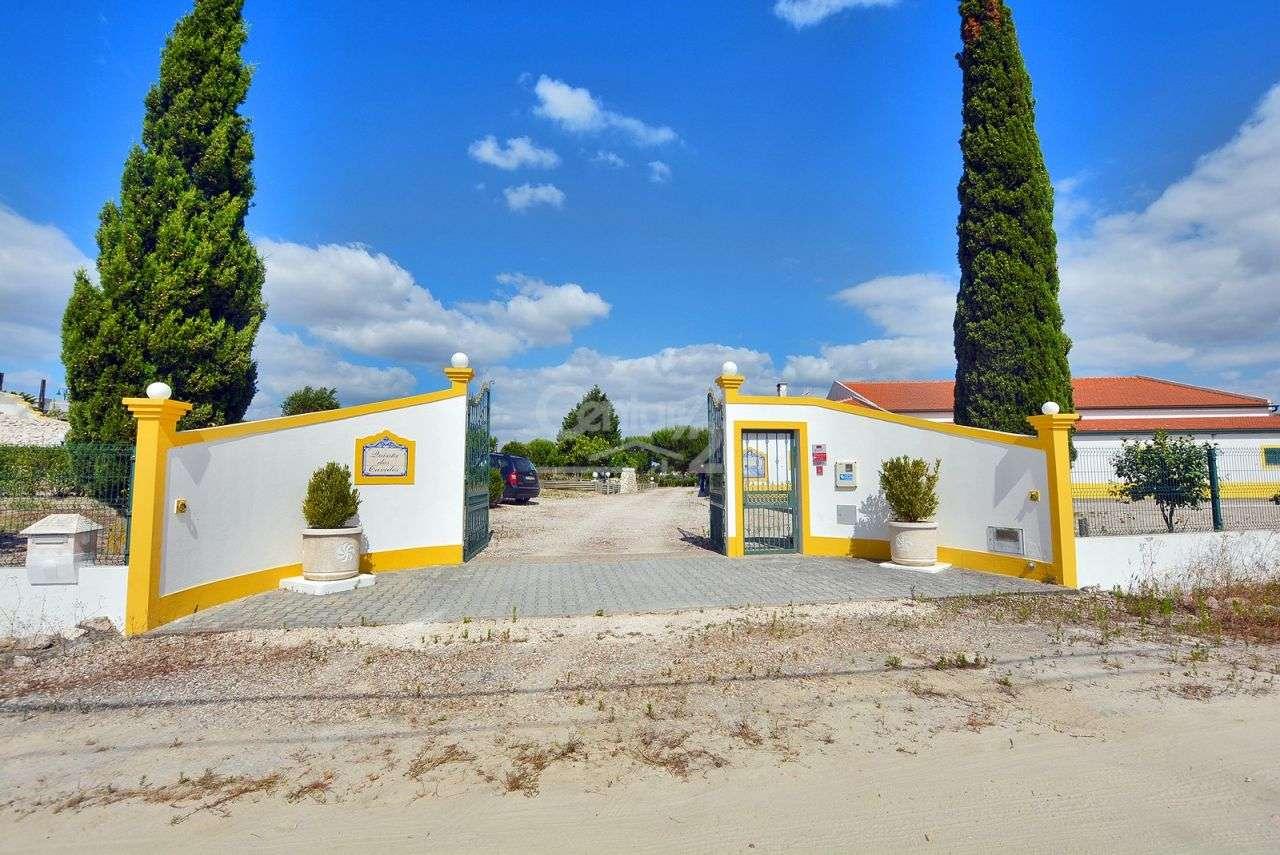 Quintas e herdades para comprar, Branca, Coruche, Santarém - Foto 2
