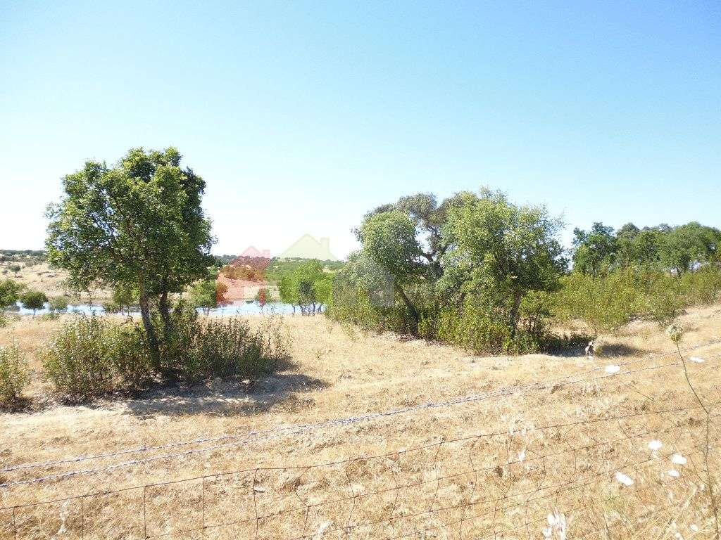 Quintas e herdades para comprar, Almodôvar e Graça dos Padrões, Beja - Foto 11